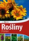 Piękna Polska Rośliny Polski (Uszkodzona okładka)
