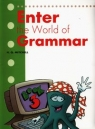 Enter the World of Grammar 3