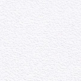 Papier ozdobny (wizytówkowy) Jowisz A4 - biały 240 g