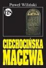 Pan Samochodzik i Ciechocińska masewa. Tom 128