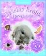Dzielny królik i przyjaciele