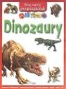 Pracowity przedszkolak Dinozaury Stephens Andrew