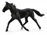 Koń rasy klusak amerykański maści czarnej XL