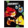 Teczka z gumką A4 Angry Birds (TGA4AB)