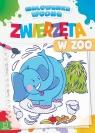 Malowanka wodna Zwierzęta w zoo