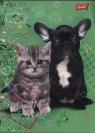 Zeszyt A5 w kratkę 16 kartek My little friend