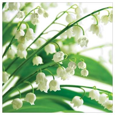 Karnet kwiatowy FF73