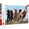 Puzzle 1000: Galopujące konie (10446)