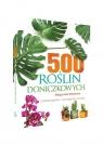 500 roślin doniczkowych Charakterystyka, wymagania, porady Mederska Małgorzata