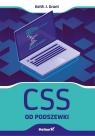 CSS od podszewki