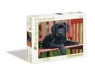 Puzzle High Quality Collection The Black dog 500 elementów (30346)