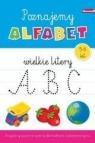 Książeczka edukacyjna. Poznajemy alfabet duże lit.