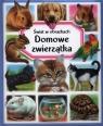 Domowe zwierzątka Świat w obrazkach