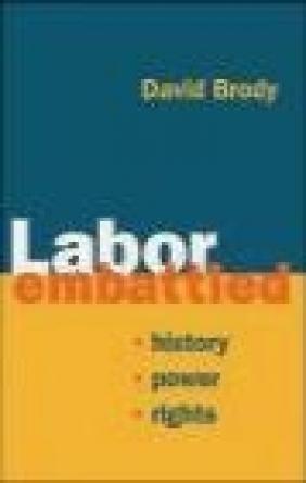 Labor Embattled David Brody,  Brody