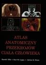 Atlas anatomiczny przekrojów ciała człowieka (Uszkodzona okładka) Ellis Harold, Logan Bari M., Dixon Adrian K.