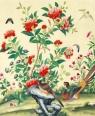 Karnet z kopertą Study of flowers and birds