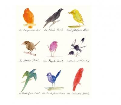 Karnet 17x14cm z kopertą Drawings of comic birds