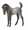 Źrebię Mustang maści Grulla (88546)