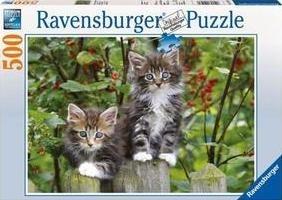 Puzzle 500 Kotki na plotku (141470) RAP141470