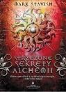 Strzeżone sekrety alchemii Skuteczne eliksiry, uzdrawiające energie i Stavish Mark