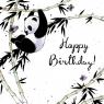 Karnet Swarovski kwadrat CL2503 Urodziny panda