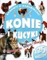Konie i kucyki Zabawy z naklejkami