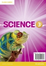 Big Science 3 Flashcards