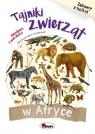 Tajnki zwierząt w Afryce Zabawy z kalką Kwiecińska Mirosława