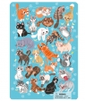 Puzzle ramkowe 53: Koty (DOPR300180)
