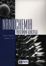 NanochemiaPodstawowe koncepcje Cademartiri Ludovico, Ozin Geoffrey A.