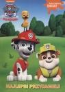 Psi Patrol Malowany świat Najlepsi przyjaciele