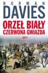 Orzeł biały czerwona gwiazda Wojna polsko-bolszewicka 1919?1920 Davies Norman