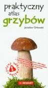 Praktyczny atlas grzybów Orłowski Jarosław
