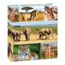 Segregator A4 Dzikie zwierzęta