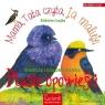 Ptasie opowieści. Wiersze i kolorowanki Elżbieta Czajka