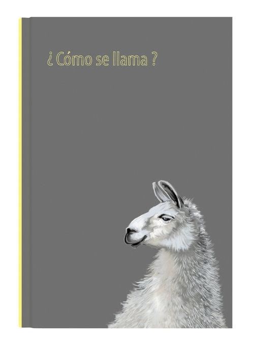 Notes Narcissus Gee Llama (01483)