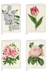 Karnet z kopertą Kwiaty 11,5 x 17cm (AGR 048)