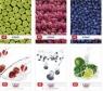 Zeszyt A5 Fresh Fruit w kratkę 80 kartek 5 sztuk mix