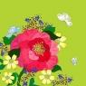 Karnet Swarovski kwadrat CL0605 Kwiaty limonka