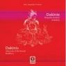 Dakinie - biografie żeńskich buddów
