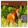 Kalendarz 2021 30x30 Konie HELMA