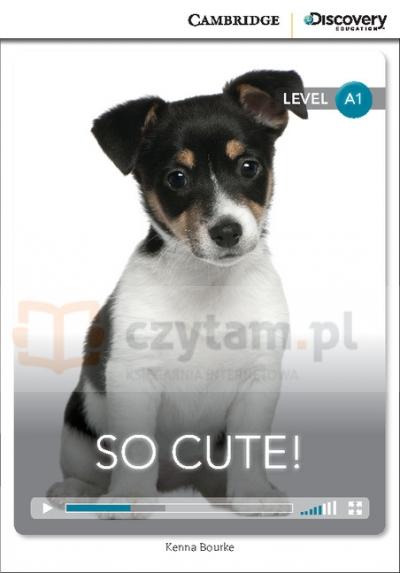 So Cute! Beginning Book with Online Access Bourke Kenna