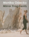 Mirror Fragments