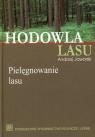 Hodowla lasu Tom 2 Pielęgnowanie lasu Jaworski Andrzej