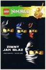 LEGO Ninjago - Zimny jak głaz Komiks nr 5 praca zbiorowa