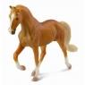 Klacz rasy stallion golden palomino (88449)