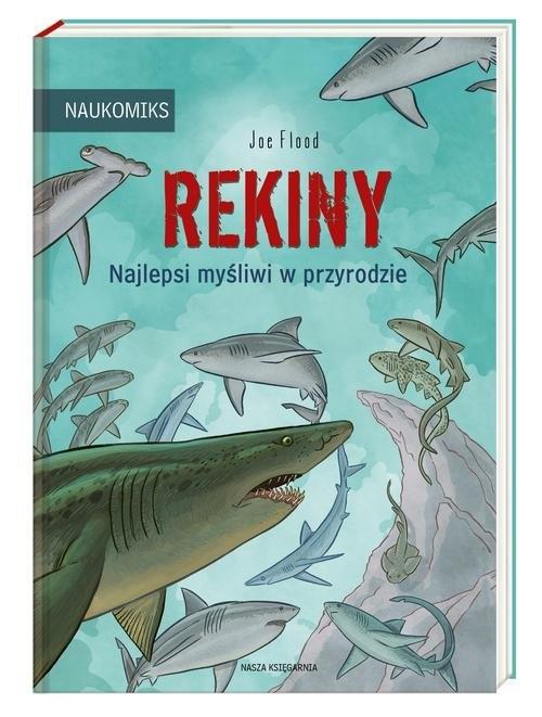 Rekiny Flood Joe