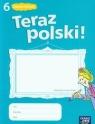 Teraz polski 6 Zeszyt ćwiczeń