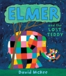 Elmer and the Lost Teddy McKee David