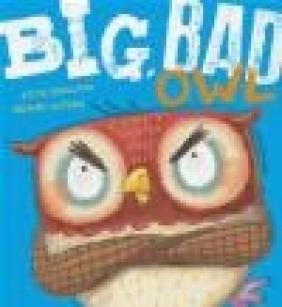 Big, Bad Owl Steve Smallman
